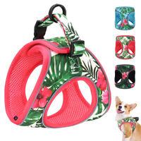 Hundegeschirr Rosa für kleine Hunde Welpen Jacke Reflektierend Comfort Weste S-L