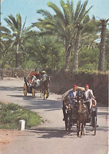 BF27101 promenade a travers l oasis gabes types   tunisia  front/back image