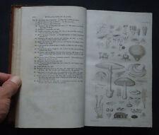 FLORA EDINENSIS:  A Description of the Plants Growing Near Edinburgh Botany 1824