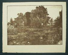 Lithografie 1918 - FERDINAND STEININGER - Teich mit Seerosen