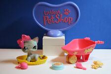 Authentic Vtg  Littlest Pet Shop Short Haired Cat # 483 Grey Green Flower Eyes