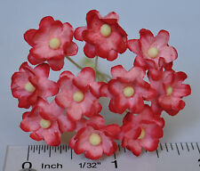 Mulberry Paper Flower Tiny Phlox daisy Picot tee Pink & Red for doll house craf