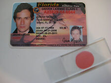 Dexter - Brian Moser Driver's License & Blood Slide - Ice Truck Killer - Prop
