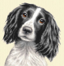 Black + White SPRINGER SPANIEL dog, puppy  - complete counted cross stitch kit