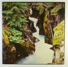 """12"""" LP - Cat Stevens - Back To Earth - B4134 - washed & cleaned"""