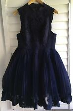 Navy Embroidered Vintage Look Tulle High Neck TED BAKER Dress 14 Worn Once