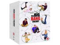 THE BIG BANG THEORY Complete Series Seasons 1-12 DVD Set FREE SHIPPING