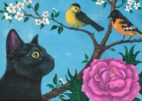 ACEO PRINT OF PAINTING RYTA BLACK CAT SPRING BIRDS BALTIMORE ORIOLE WARBLER ART