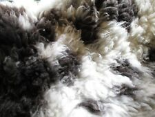 Raw Jacob wool sheep Fleece Craft Spinning Felting Knitting spinning yarn 700g