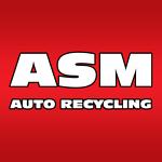 ASM Auto Recycling Ltd