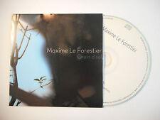 MAXIME LE FORESTIER : GRAIN D'SEL ♦ CD SINGLE PORT GRATUIT ♦