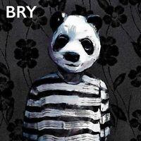 Bry (2016) 10-track CD album NEW/SEALED Brian O'Reilly