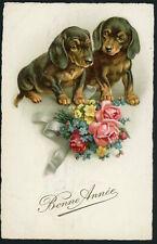 1926 Dachshund Dackel Teckel  2 Puppy dogs  New Year old Dog PC
