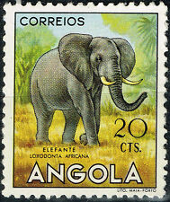 Angola Fauna Tropical Wild Animal African Elefant stamp 1955 MLH