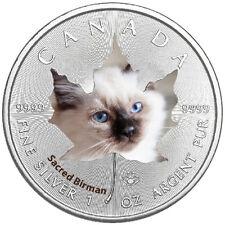 1 Oz Silber Maple Leaf Farbe 2017  Cute Kittens Heilige Birma Cat Katzen Kanada