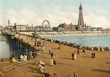 "P15 Vintage 1890's Photochrom Photo North Pier Blackpool Tower Print A3 17""x12"""