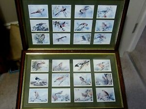 2 Framed sets of 24 Imperial Tobacco Birds of Britain Cards
