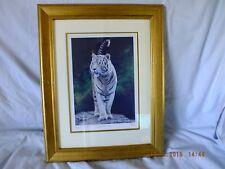 Stephen Gayford Limited Edition of 950 JUNGLE PHANTON 45X36 cm