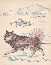 RARE ADORABLE HUSKY SLED DOG ALASKAN MALAMUTE  VINTAGE Art Print 1950