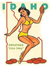 IDAHO     Pin-Up Girl   Vintage Style 1950's  Travel Decal Sticker