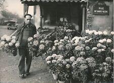PARIS 1956 -Auto Fleuriste Chrysanthèmes Toussaint Cimetière de Gentilly- PR 533