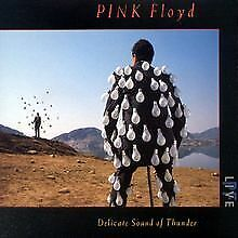 Delicate Sound of Thunder by Pink Floyd | CD | condition good