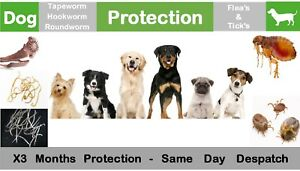 Large Dog up to 40kg Flea Tick Wormer - De-wormer, 3 Mth Protection 3 Day Del