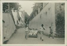 Portugal, Madeira  Vintage silver print.  Tirage argentique d'époque  6