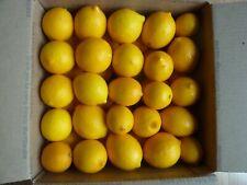 2021 Fresh Meyer Organic Lemons Around 14 lbs in USPS Large Priority Package