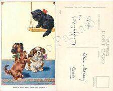 Cucciolo di gatto su altalena e cuccioli di cane in attesa / illustratore Valter
