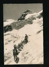 Dogs with sled Switzerland Jungfraubahn Used 1947 RP PPC