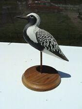 Vintage Black Bellied Plover Shorebird Decoy