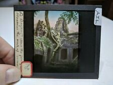 Colored Glass Magic Lantern Slide AIL Cambodia Angkor Buddhist Bayon Jungle Grow
