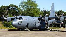 Inflight 200 IF1300317 1/200 New Zealand Air Force C-130H Hercules NZ7003 con Soporte