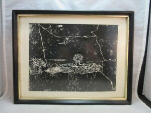 Signed 1971 Pat Emerson print. Baby bird in nest