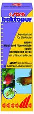 Sera Baktopur 50ml für 1000 Liter gegen Maulfäule und Flossenfäule bakterien