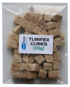 Tubifex Worm CUBES Tropical Aquarium Fish Food Best  Quality Freeze Dried  [10g]