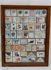 "48 Worldwide Cat/Kitten Postal Stamps-No 2 Alike-Nicely Framed 14 1/2 X 11 1/8"""