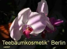 ***Muskatellersalbei, (Salvia  sclarea L.), GUS, 10 ml, Topp-Qualität!!