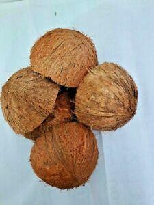 Sri Lanka -2 PIECES ECO-FRIENDLY COCONUT SHELL HALVES FRUIT BOWL DECORATION