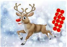 PIN THE NOSE ON THE REINDEER Christmas Party Game Children's Rudolf  Kids 20 pcs
