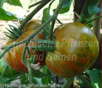 🔥 🍅 CHOCOLATE STRIPES Tomate ** Fleisch-Tomaten ** 10 Samen