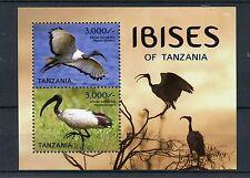 Tanzania 2015 MNH Ibises of Tanzania 2v S/S Birds African Sacred Ibis