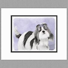 Shih Tzu Dog Original Art Print 8x10 Matted to 11x14