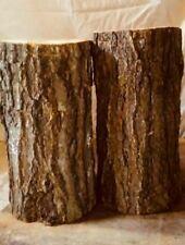 2 Arkansas 10-12 in x4-6 in oak mushroom logs