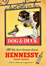 Drink Hennessy Cognac Brandy Dog and Duck Drink Pub Bar Alcohol  Poster Print