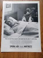 1963 Spring Air Mattress Ad  Springer Spaniel Dog