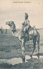PC54398 Camel Cavalry Transport. B. Hopkins