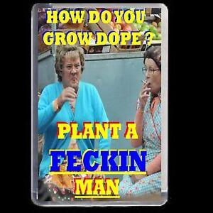 MRS BROWNS BOYS FRIDGE MAGNET ADULT JOKE NOVELTY GIFT BIRTHDAY  DVD