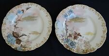 Haviland Limoges France Factory Decor. 2 Plates Gold Trim w/Birds -Blue Florals